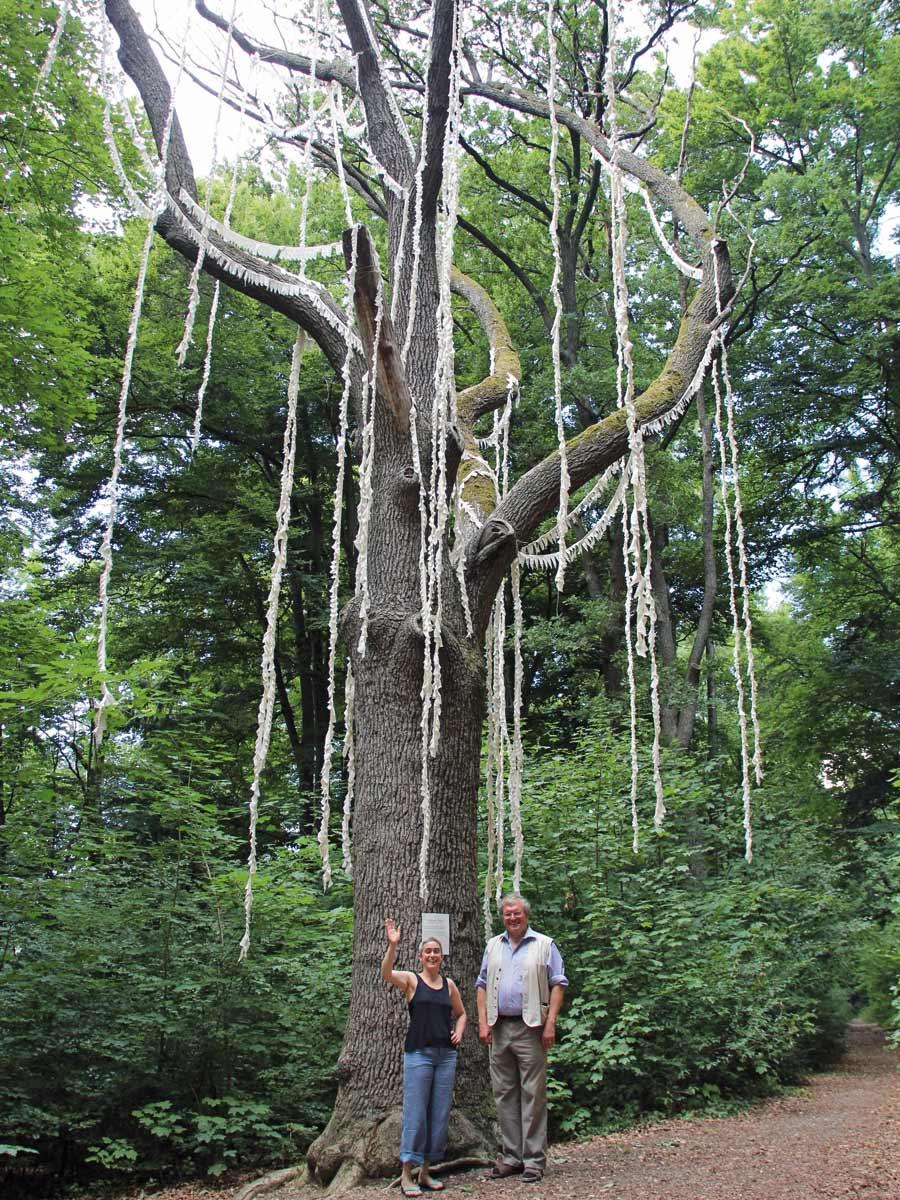 Klettereiche - Denkmal von Iris von Huene